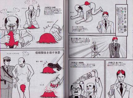 katsura style special edition