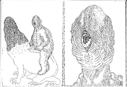 七つ目の神の漂流記/ドーム  七つ目の神の漂流記