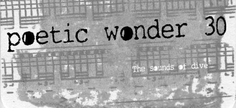 poetic wonder 30